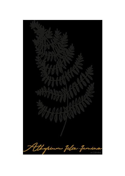 gezeichnet handgezeichnet Illustration Blume Logo Herz Lineart Farn