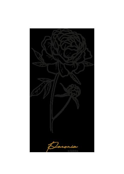 gezeichnet handgezeichnet Illustration Blume Logo Herz Lineart Pfingstrose